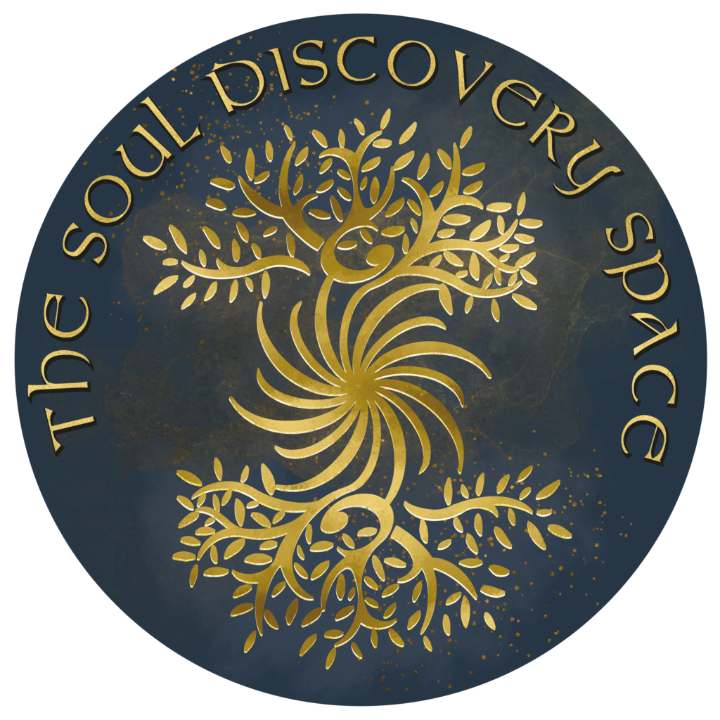 JL SDS Logo Final-01